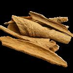 Vietnamese cassia (Cinnamomum loureiroi)