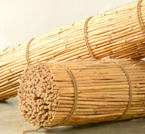 cinnamon bale from Sri Lanka